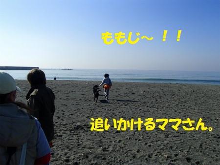 P3160079_2