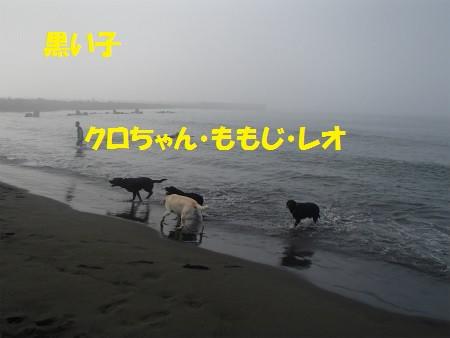 P8110171