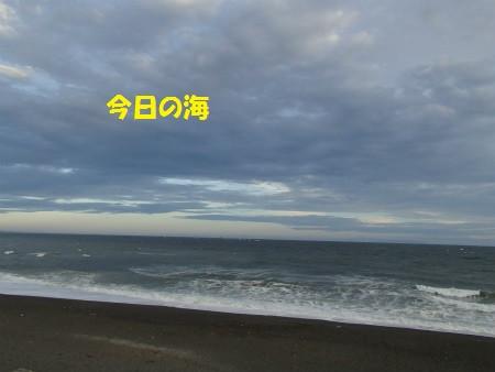 P8040017_2
