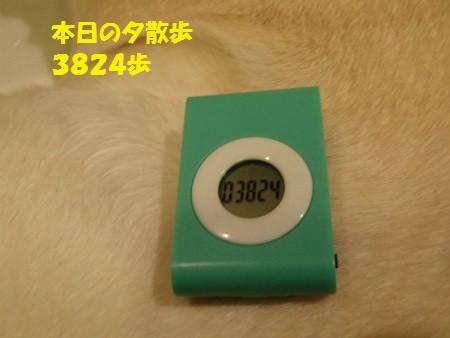 P1270090