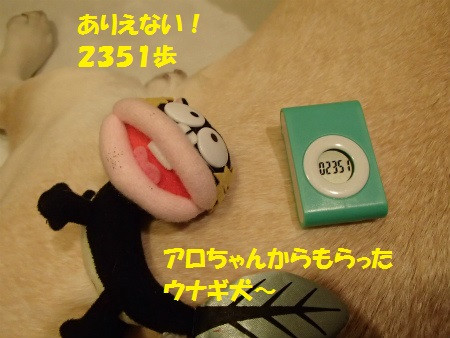 P1280137