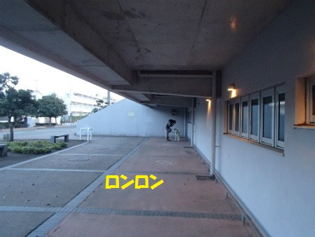 P3120106