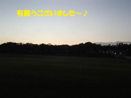 Pb240291_2