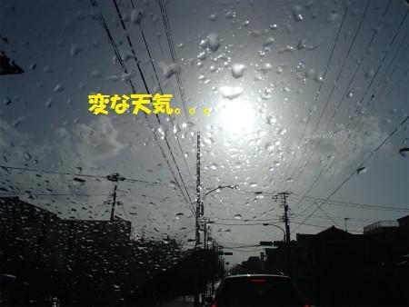 P4170008_2