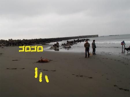 P4240041