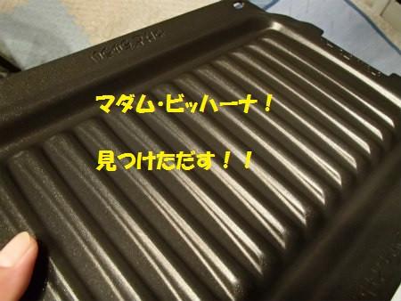 P8080001_2