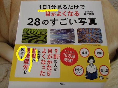 P6030012_2