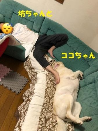 Img_7124_20190815125201