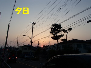 P4230053