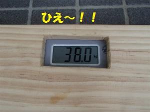 P6080011_2