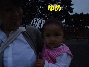 Pa080014_2