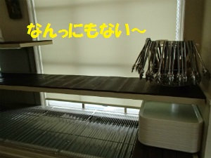 P4250041_2