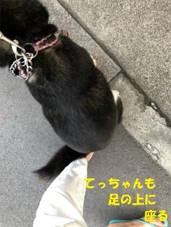 Img_9261_4